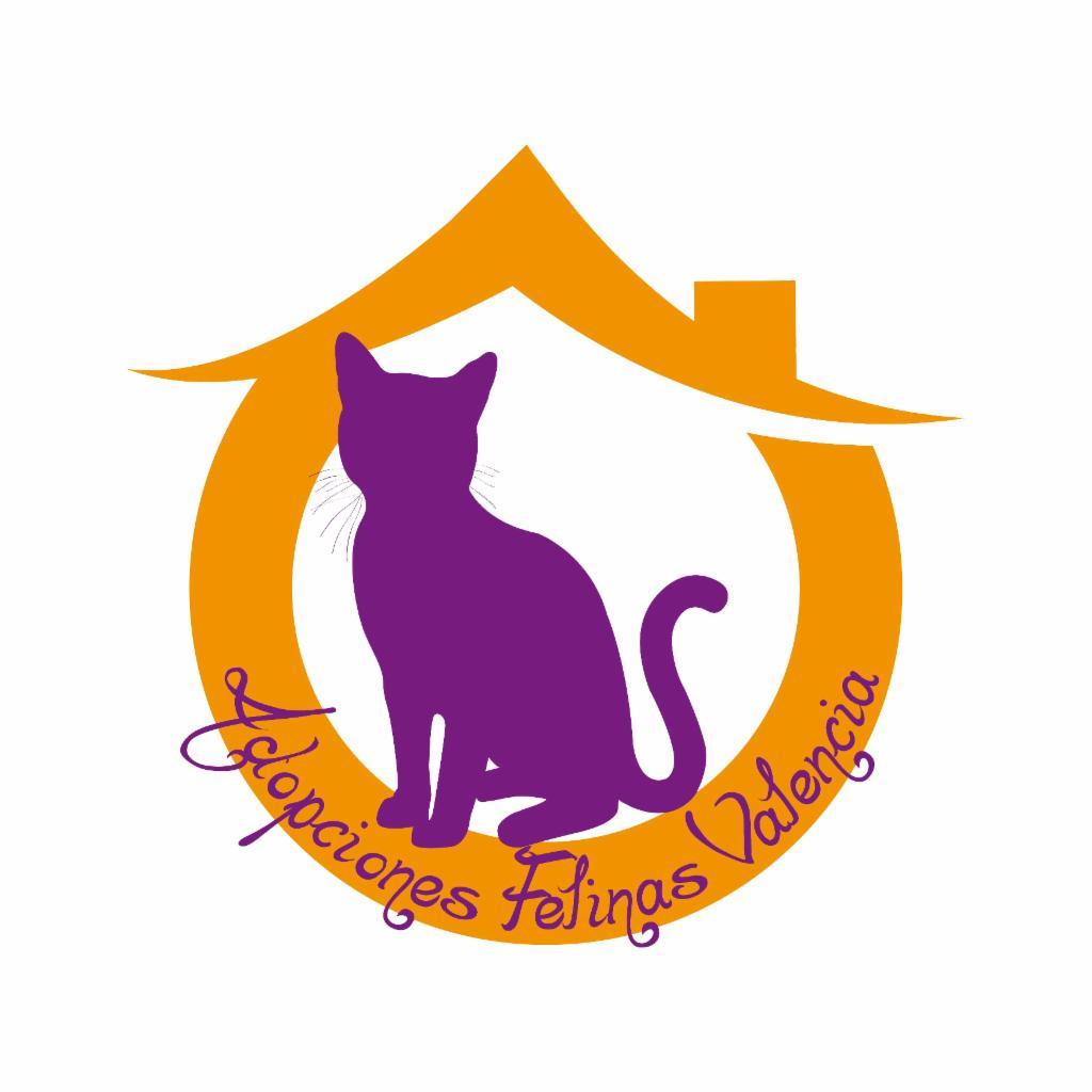 Adopciones Felinas Valencia