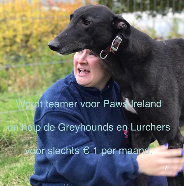 PAWS Ireland
