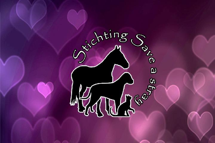 Stichting Save a stray - Stray animal funding