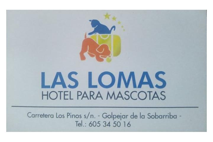 Abuelitos Las Lomas