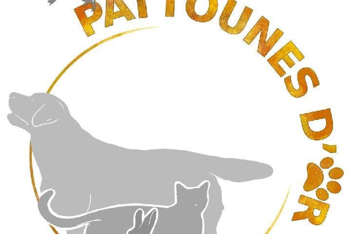 Asso Pattounes D'Or