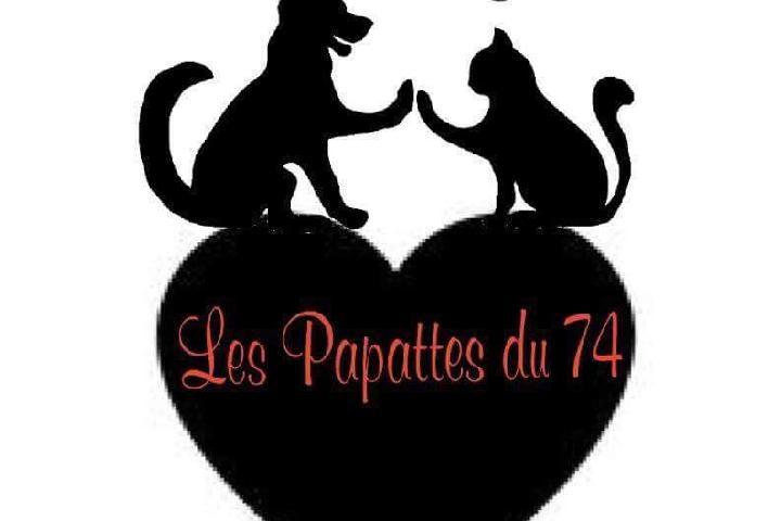 Les Papattes du 74 animaux à aider