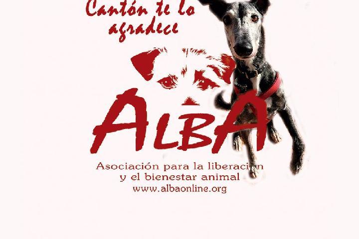 Protectora de animales ALBA