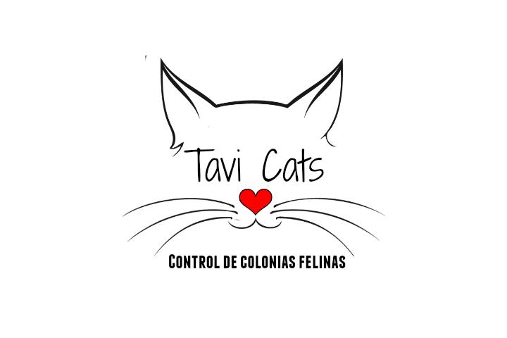 TaviCats