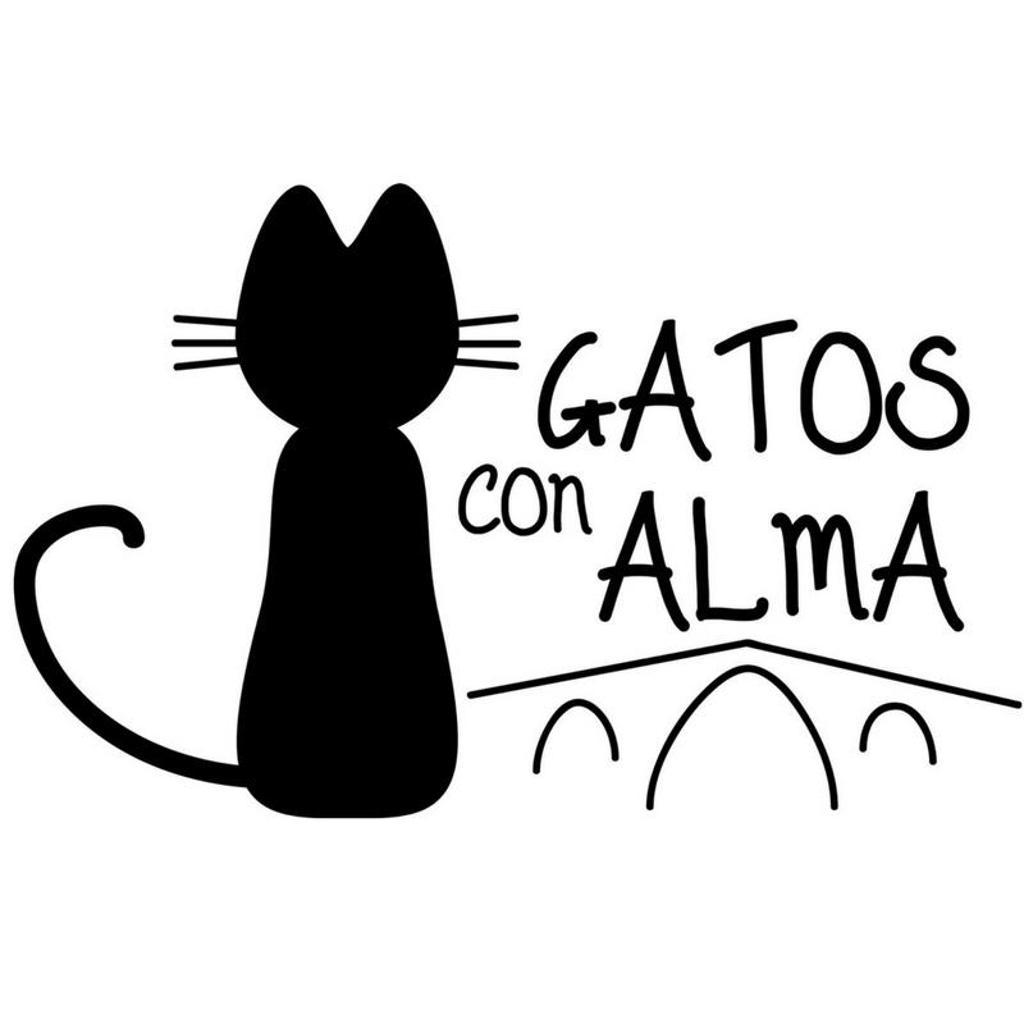 Gatos con Alma - Gastos Veterinarios