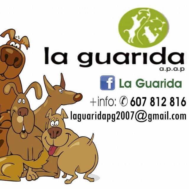 La Guarida.