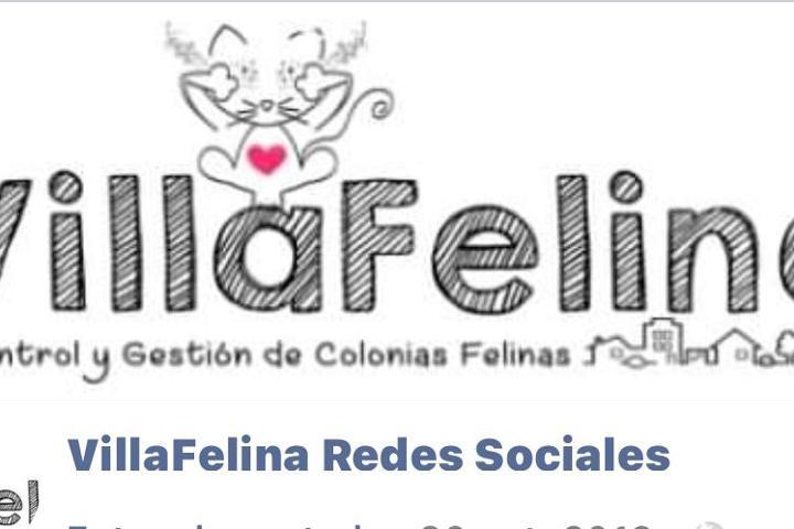 VillaFelina