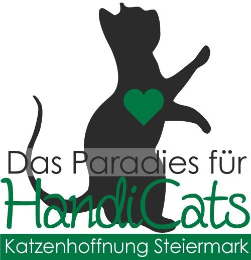 Paradise for HandiCATs - Katzenhoffnung Steiermark