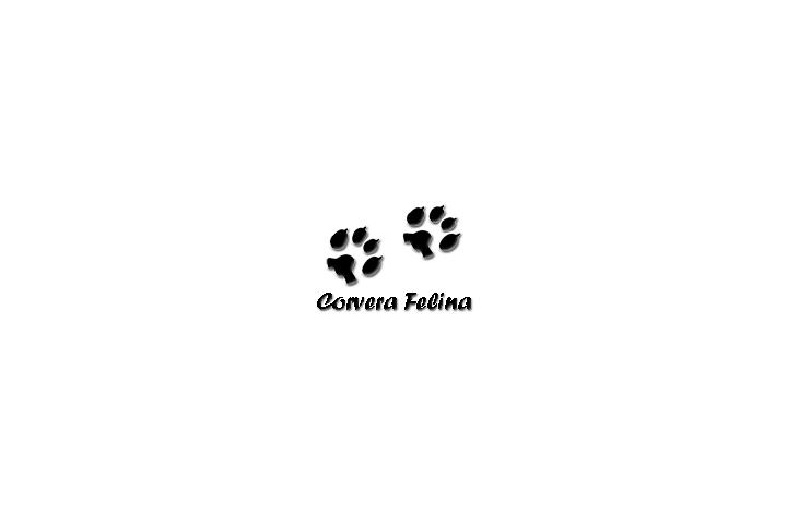 Corvera Felina