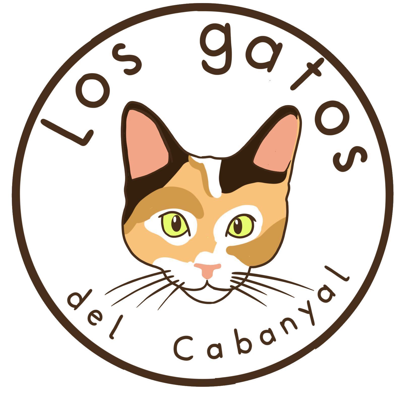 Los Gatos del Cabanyal