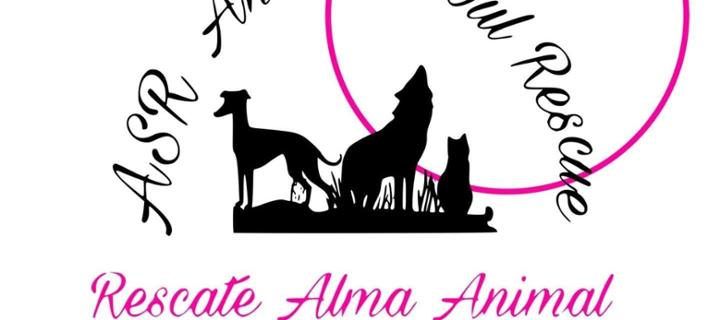 ASR ANIMAL SOUL RESCUE-RESCATE ALMA ANIMAL ASOCIACIÓN PROTECTORA