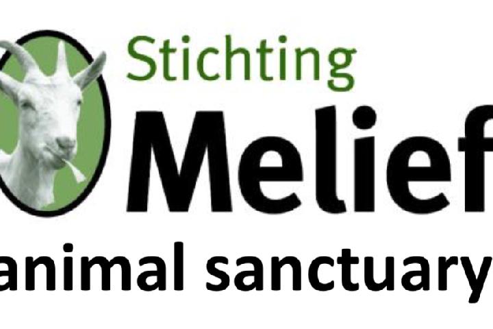 Stichting Melief Animal Sanctuary
