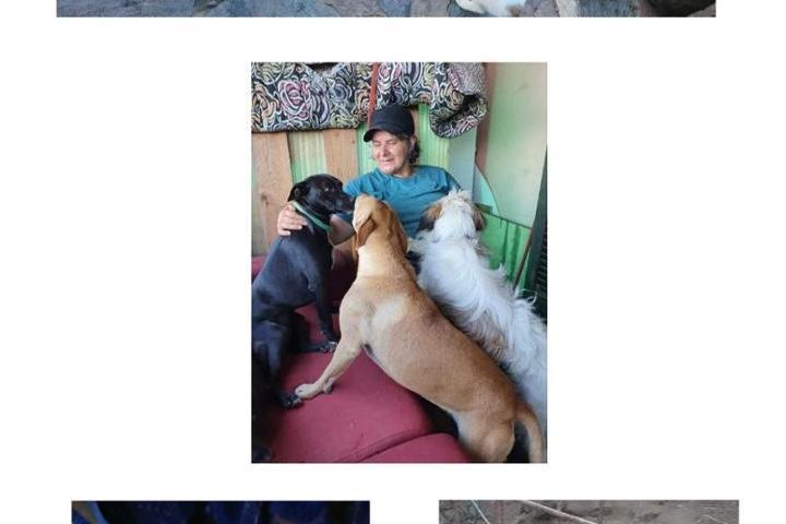 Hilfe für Concetta Maria Accoli und die Strassenkatzen auf Elba
