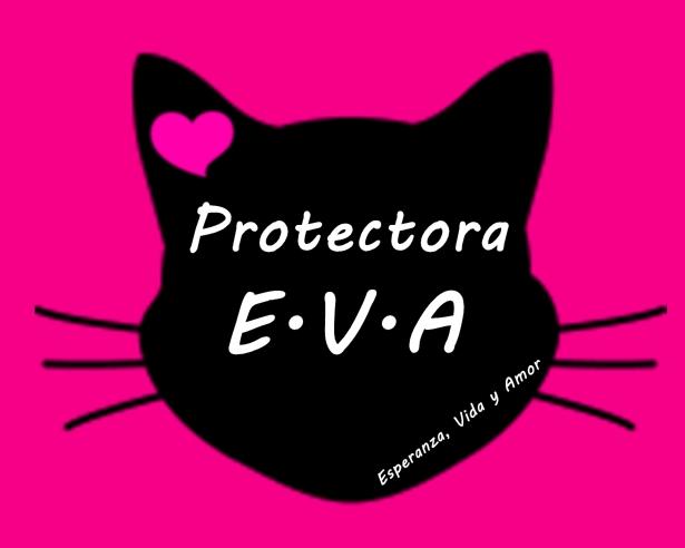 PROTECTORA EVA