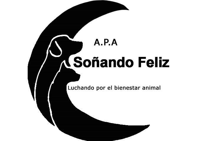 A.P.A SOÑANDO FELIZ