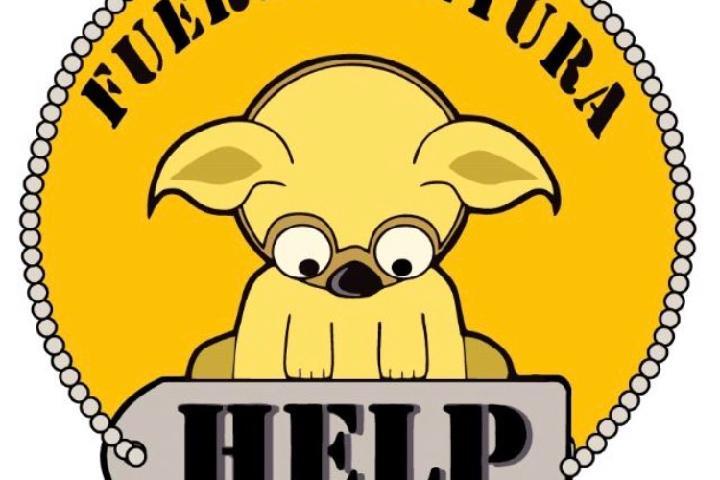 Help Fuerteventura