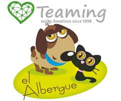 elalbergue.org