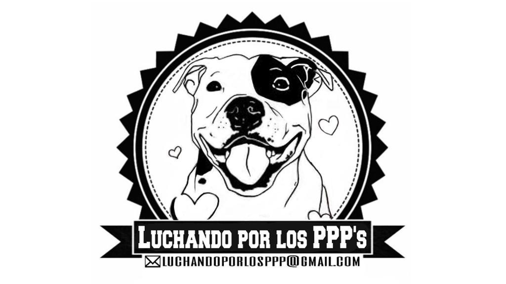 LUCHANDO POR LOS PPP'S