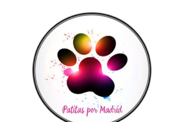 Patitas por Madrid