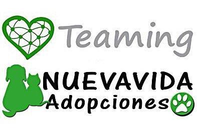 NUEVAVIDA-Adoptions