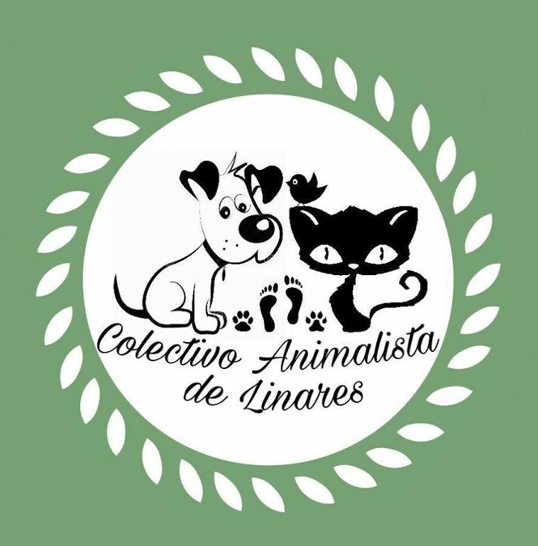 Colonias Felinas Linares