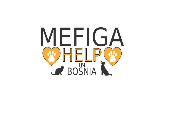 MEFIGA-Help cats and dogs in Bosnia