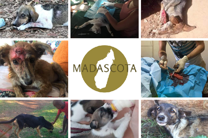 MADASCOTA ANIMAL AID