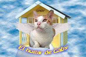 El Hogar de GABY