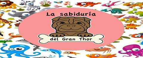 LA SABIDURIA DEL GRAN THOR