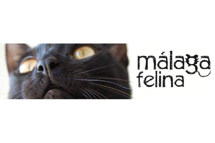 Malaga Felina