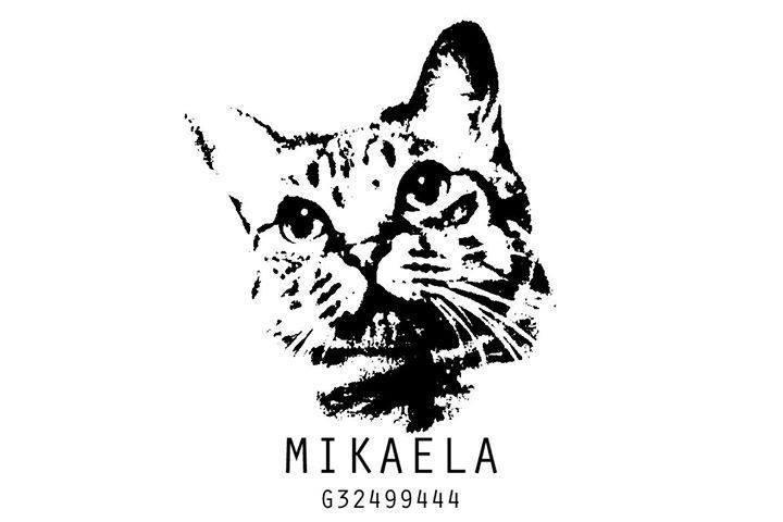 Asociación Mikaela Celanova