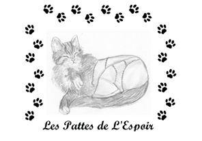 Association LES PATTES DE L'ESPOIR