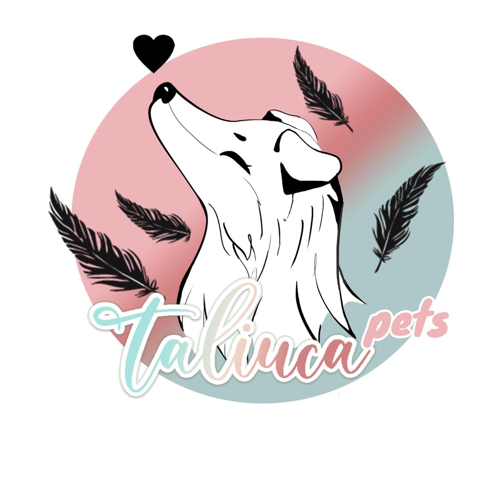 Taliuca Pets - Influencer Cuidado Animal