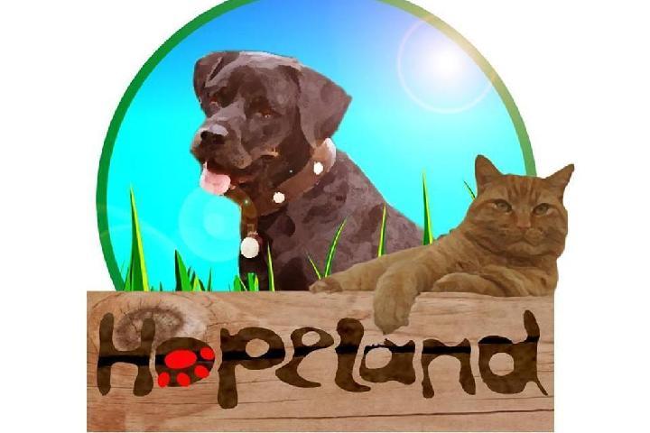 Asociación Hopeland