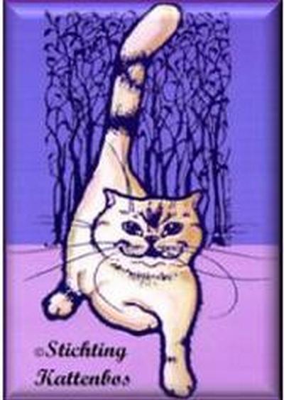 Stichting Kattenbos