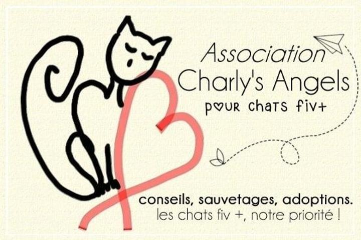 Association Charly-s-Angels