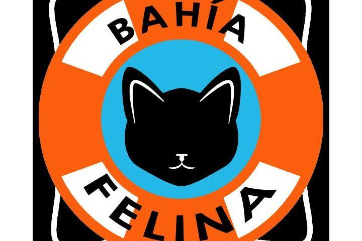 Bahía Felina