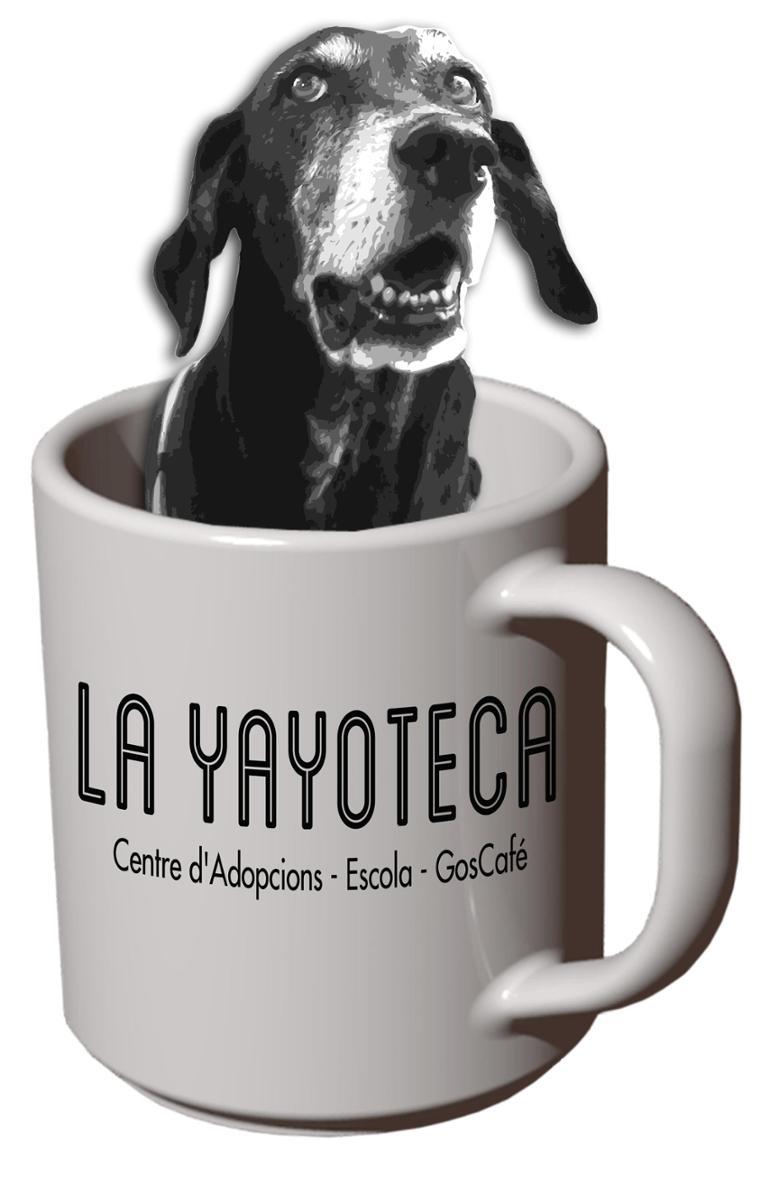 La Yayoteca-GosCafé