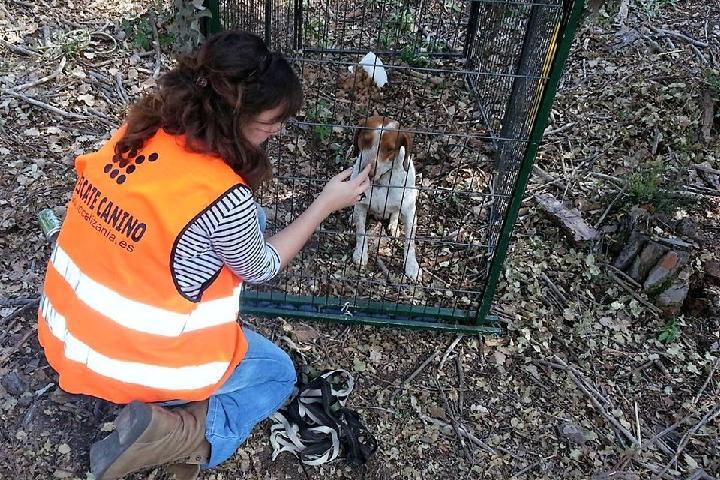 Localizania - rescate animal