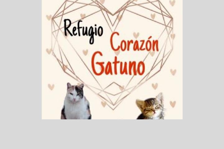 Refugio Corazón Gatuno