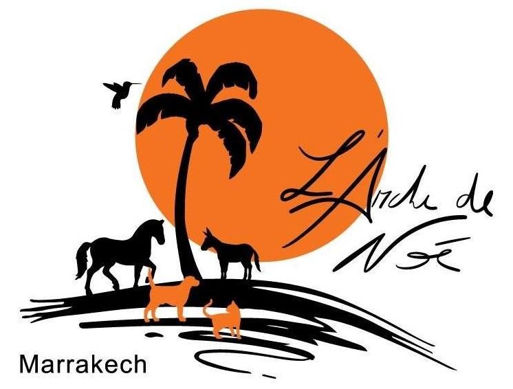 Noah's Ark, Marrakech