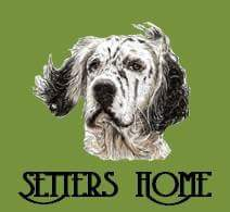 Setters Home