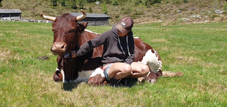 Projekt Lebensänglich - Unterstützung für ehemalige Nutztiere