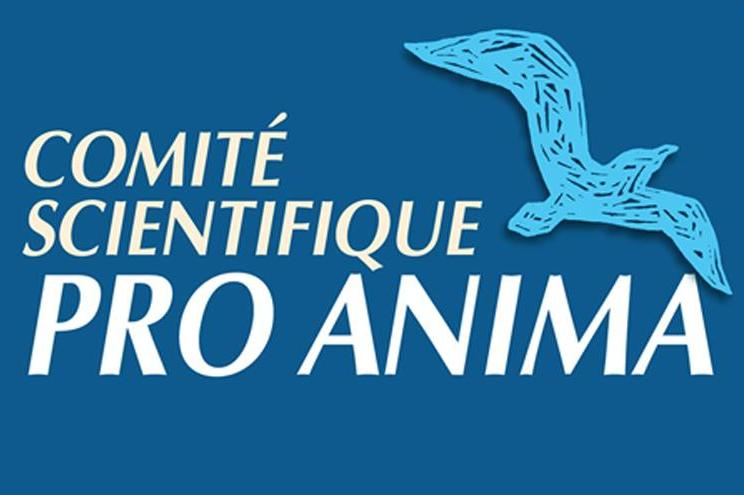 Pro Anima - La Recherche Responsable