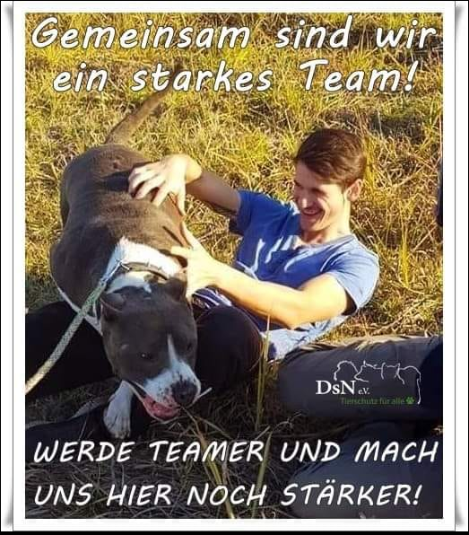 DsN Animal protection for all!