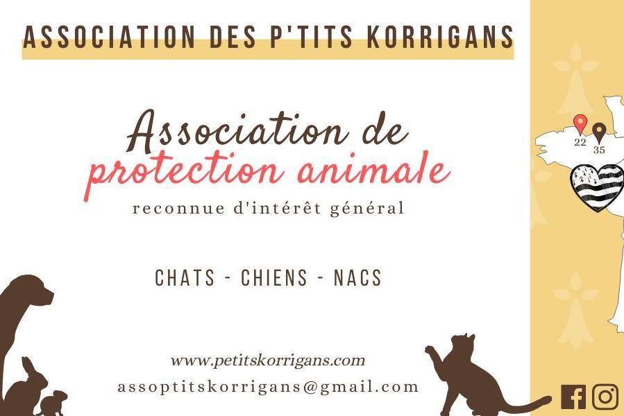 Association Des P'tits Korrigans (ADPK)