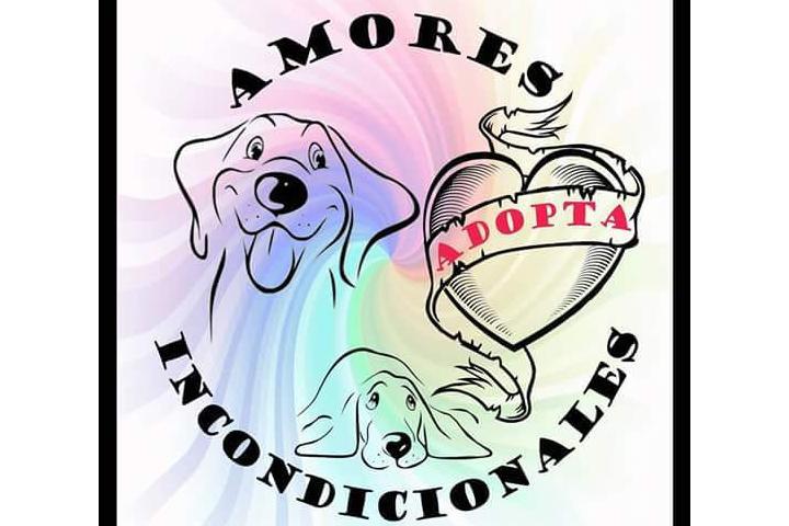 Asociación Amores Incondicionales