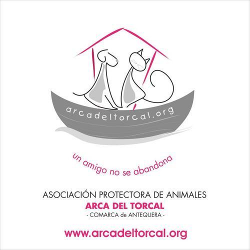ARCA DEL TORCAL