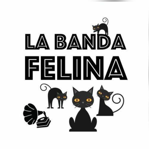 Colonia La Banda Felina
