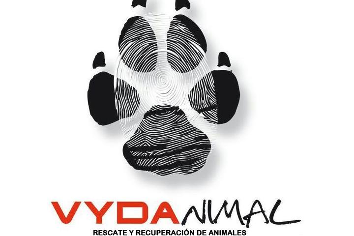 VYDANIMAL (Protectora de Animales)